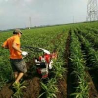 开沟施肥机大号葱开沟培土机电启动开沟培土机小型开沟培土机价格