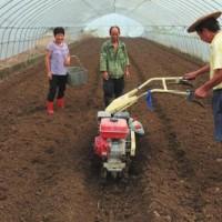 小型开沟培土机图片小型柴油开沟培土机农用小型开沟培土机